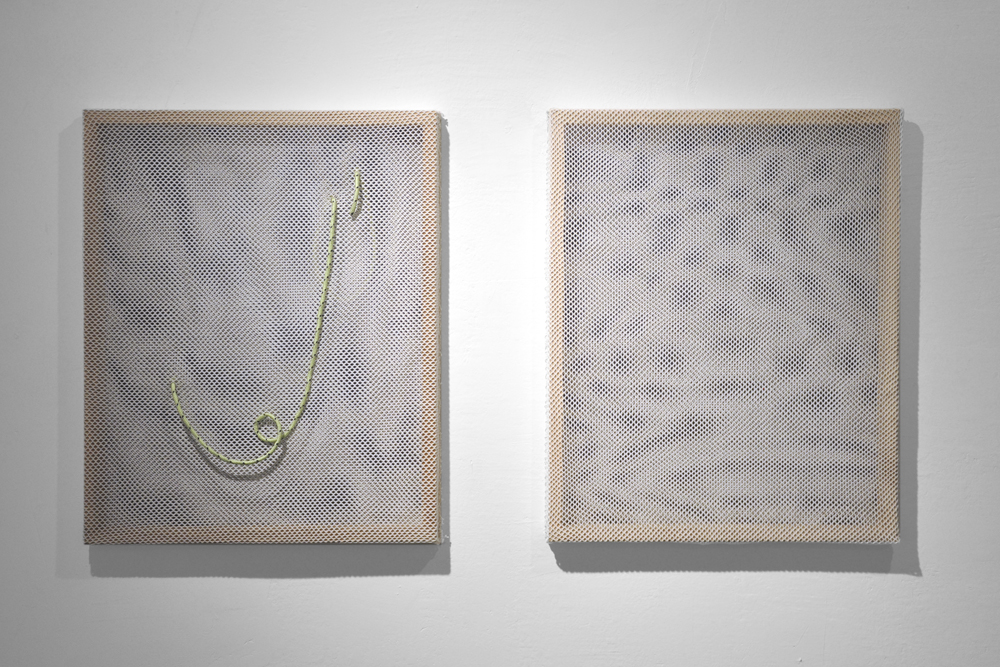 glow worm and doppleganger_______________mesh, string, wood, (glow in the dark) rope, wall paint